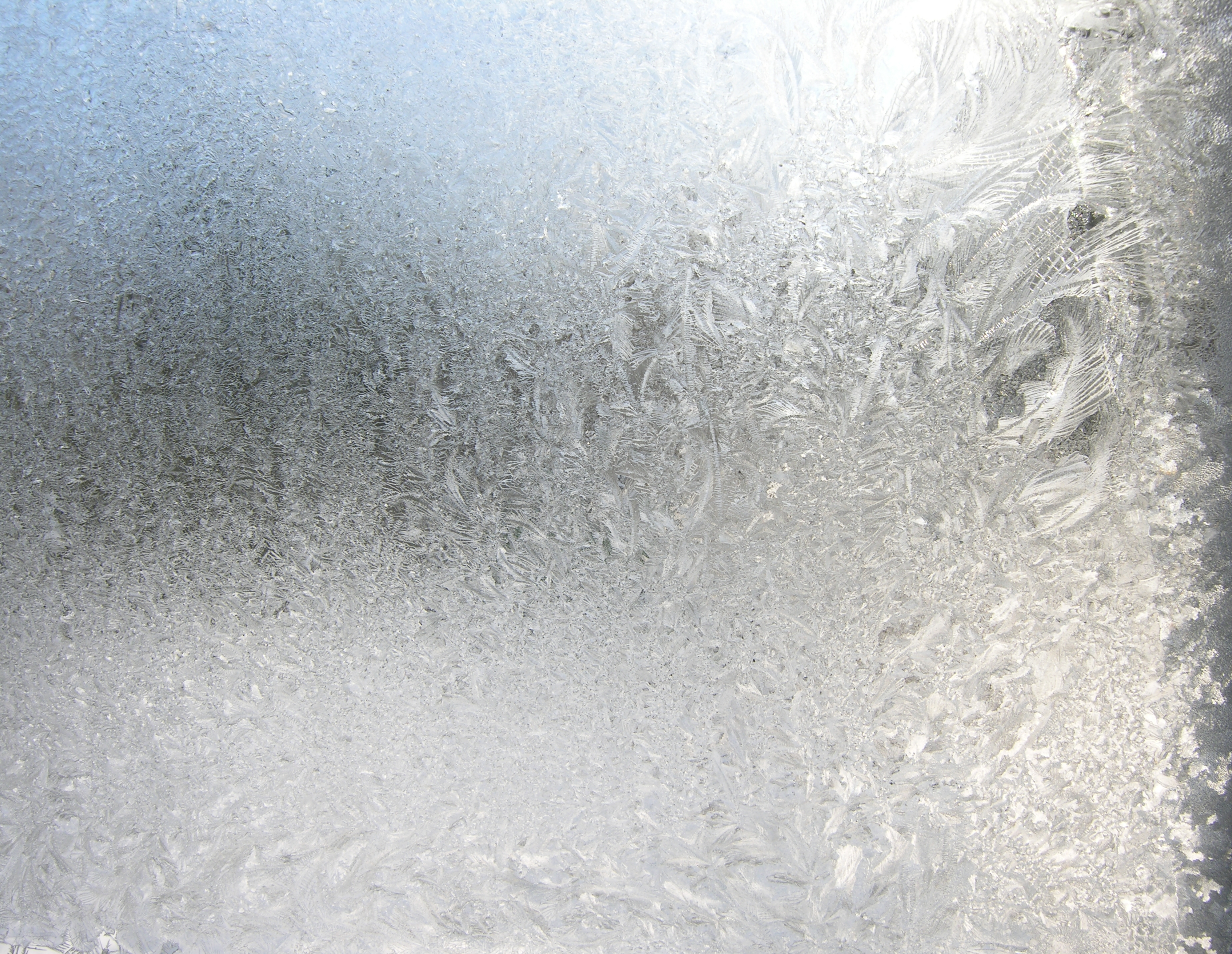 Frosted Glass Privacy Screens